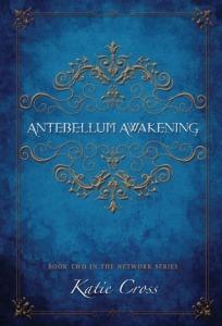 Antebellum Awakening cover